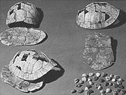 Writings on tortoise shells discovered in modern China were dated ca 6600 BC.